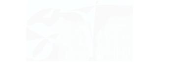 Seve Taylor Photography Logo